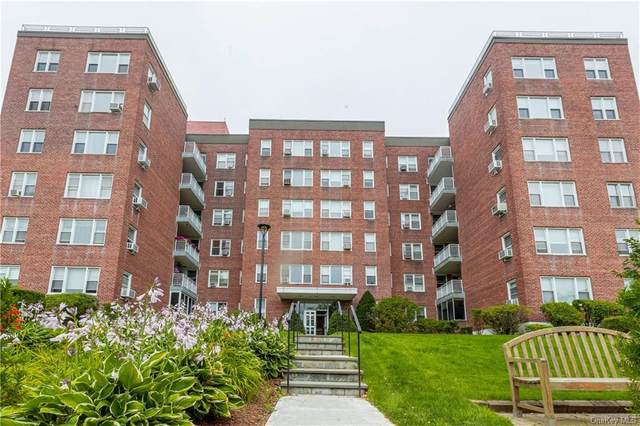 1255 North Avenue 3N, New Rochelle, NY 10804 (MLS #H6125617) :: Goldstar Premier Properties
