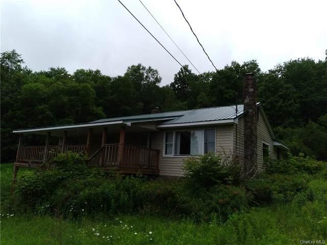 315 Elm Hollow Road, Livingston Manor, NY 12758 (MLS #H6125740) :: The McGovern Caplicki Team