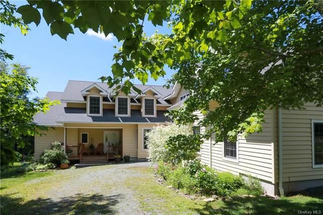 68 Turkey Hollow Lane, Livingston Manor, NY 12758 (MLS #H6125741) :: Carollo Real Estate