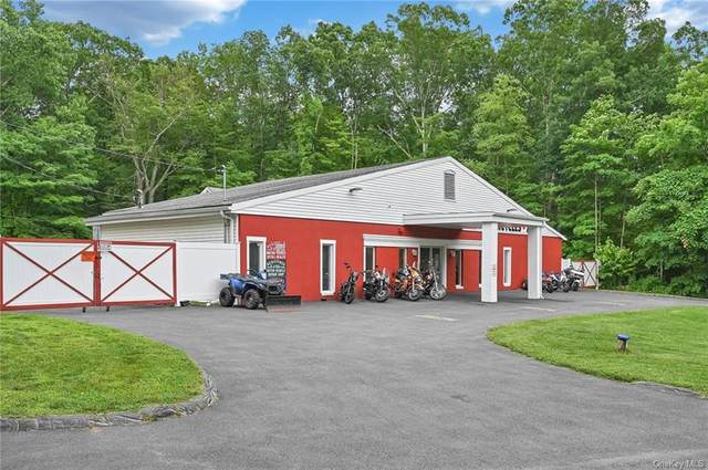 2244 Route 22 Route, Patterson, NY 12563 (MLS #H6125986) :: Nicole Burke, MBA | Charles Rutenberg Realty