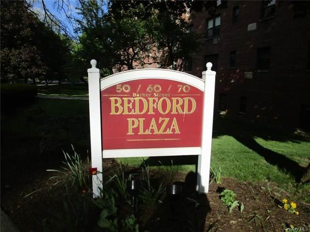 50 Barker Street #433, Mount Kisco, NY 10549 (MLS #H6126042) :: McAteer & Will Estates | Keller Williams Real Estate