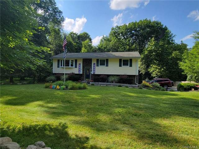 180 Farmingdale Road, Chester, NY 10918 (MLS #H6126254) :: The Clement, Brooks & Safier Team