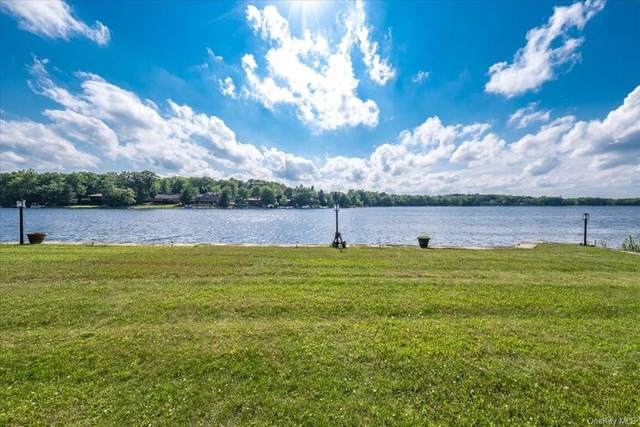 44 Overlook Road, Rock Hill, NY 12775 (MLS #H6126354) :: Kendall Group Real Estate | Keller Williams
