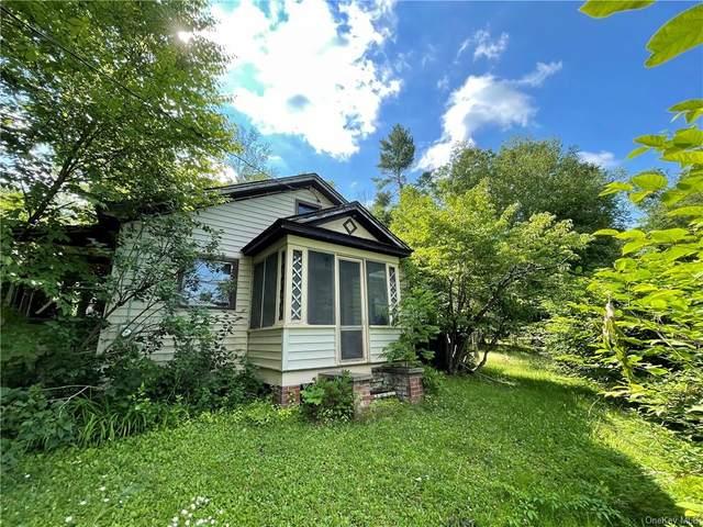 6868 Nys Rt 97 Route, Narrowsburg, NY 12764 (MLS #H6126645) :: Howard Hanna | Rand Realty