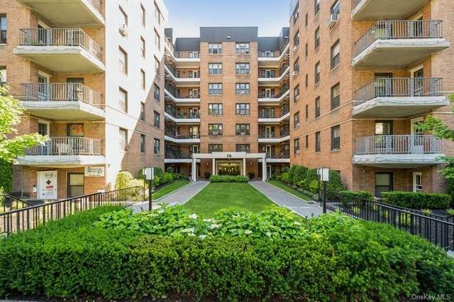 16 N Broadway 5J, White Plains, NY 10601 (MLS #H6126962) :: Howard Hanna | Rand Realty