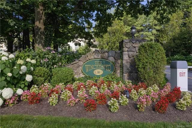 128 Winchester Drive, Yonkers, NY 10710 (MLS #H6127076) :: Howard Hanna | Rand Realty