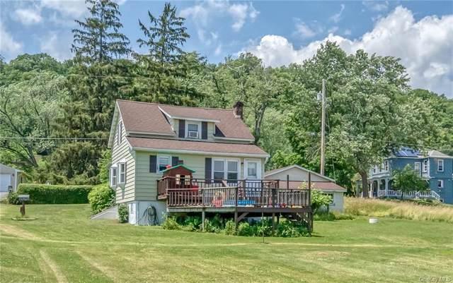 36 Pine Street, Catskill, NY 12414 (MLS #H6127152) :: Kendall Group Real Estate | Keller Williams