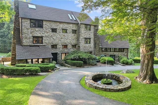 32 Tamarack Drive, Hopewell Junction, NY 12533 (MLS #H6127222) :: Carollo Real Estate