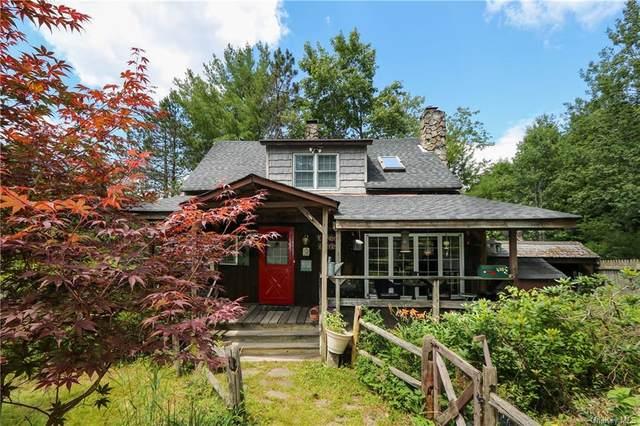 438 Brown Settlement Road, Livingston Manor, NY 12758 (MLS #H6127567) :: Signature Premier Properties