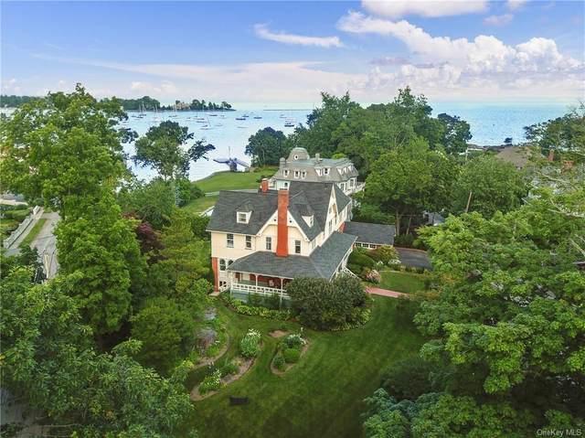 1 Park Avenue, Larchmont, NY 10538 (MLS #H6127595) :: Carollo Real Estate