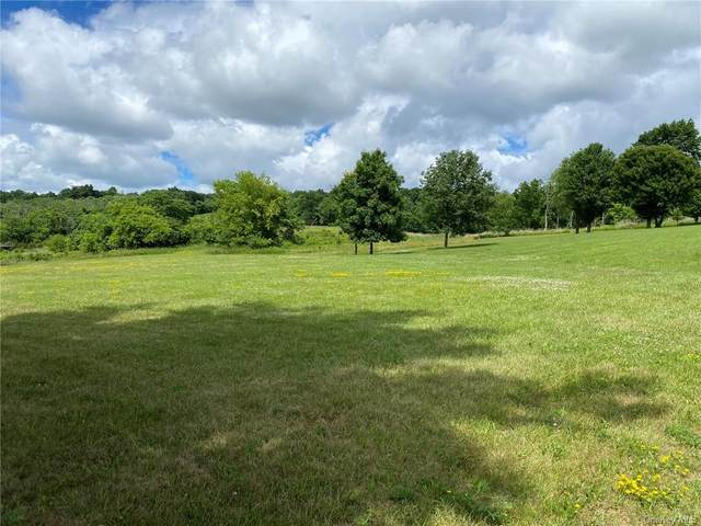 1952, 1944, 1936 State Route 17A, Goshen, NY 10924 (MLS #H6127653) :: The McGovern Caplicki Team
