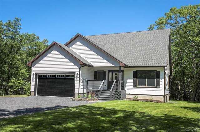 10 Gray Lane, Kingston, NY 12401 (MLS #H6127733) :: Carollo Real Estate