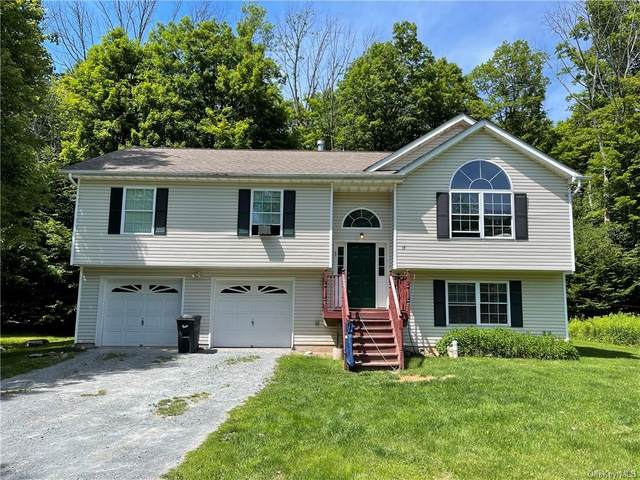 18 Laussane Drive, Woodridge, NY 12789 (MLS #H6127901) :: Kendall Group Real Estate | Keller Williams