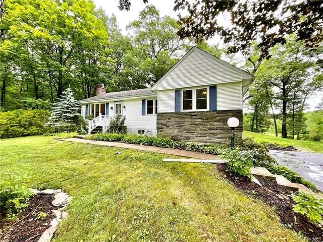 6070 Route 9, Rhinebeck, NY 12572 (MLS #H6128000) :: Carollo Real Estate
