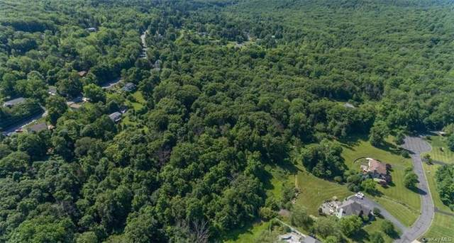 20 Calico Lane, Highland Mills, NY 10930 (MLS #H6128113) :: The Home Team