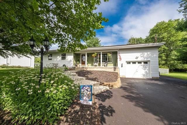 36 Red Mills Road, Pine Bush, NY 12566 (MLS #H6128160) :: Kendall Group Real Estate | Keller Williams