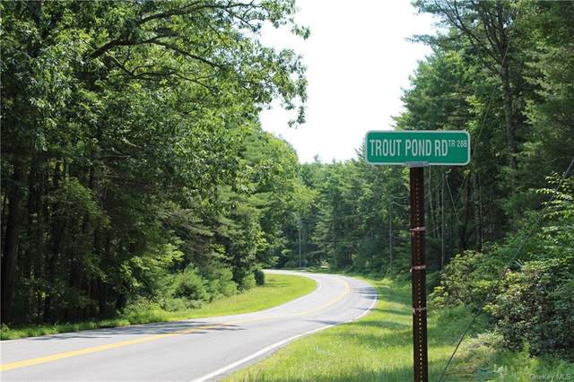Trout Pond Road Tr 288 Trail, Narrowsburg, NY 12764 (MLS #H6128210) :: Howard Hanna | Rand Realty