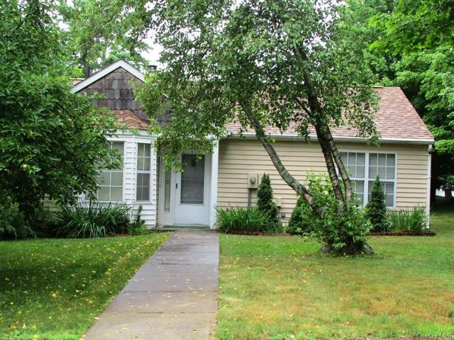 73 Hidden Ridge Drive, Monticello, NY 12701 (MLS #H6128220) :: Carollo Real Estate