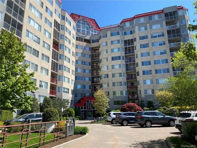 10 Stewart Place 4FW, White Plains, NY 10603 (MLS #H6128242) :: Goldstar Premier Properties