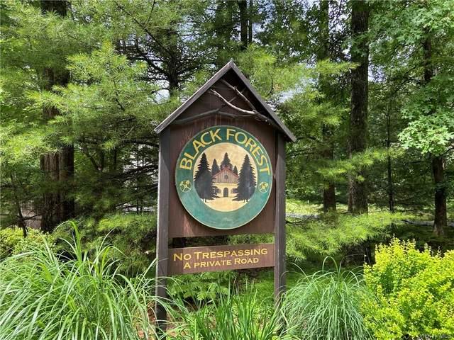 Lot 137 Main Black Forest Road, Glen Spey, NY 12737 (MLS #H6128380) :: Goldstar Premier Properties