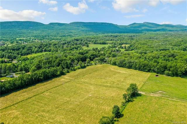 tbd Bruynswick Road, Gardiner, NY 12525 (MLS #H6128382) :: The Clement, Brooks & Safier Team