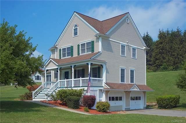 352 Reservoir Road, Goshen, NY 10924 (MLS #H6128434) :: Goldstar Premier Properties