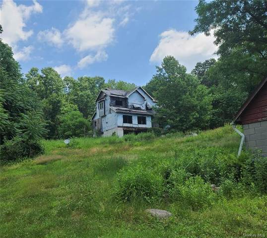 485 Old Route 209, Hurley, NY 12443 (MLS #H6128521) :: Frank Schiavone with Douglas Elliman