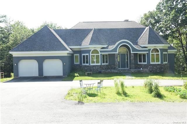 47 Seeley Road, Lagrangeville, NY 12540 (MLS #H6128542) :: Kendall Group Real Estate | Keller Williams