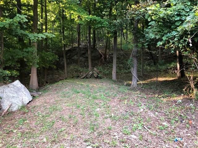 1 Oscawana Lake Road, Putnam Valley, NY 10579 (MLS #H6128548) :: Mark Seiden Real Estate Team