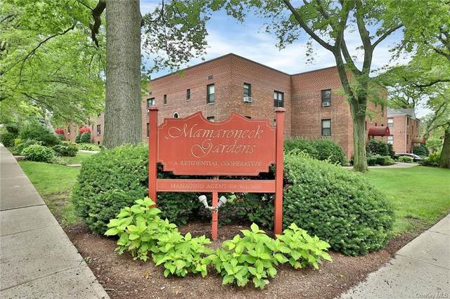 102 Richbell Road C2, Mamaroneck, NY 10543 (MLS #H6128710) :: Carollo Real Estate