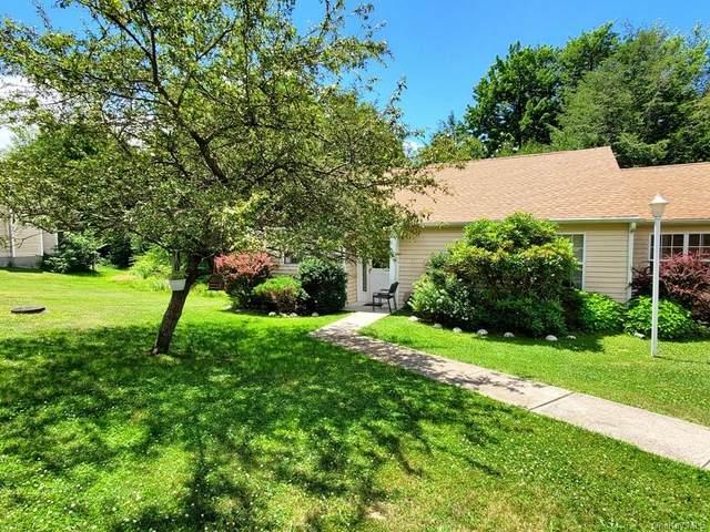 63 Hidden Ridge Drive, Monticello, NY 12701 (MLS #H6128743) :: Goldstar Premier Properties