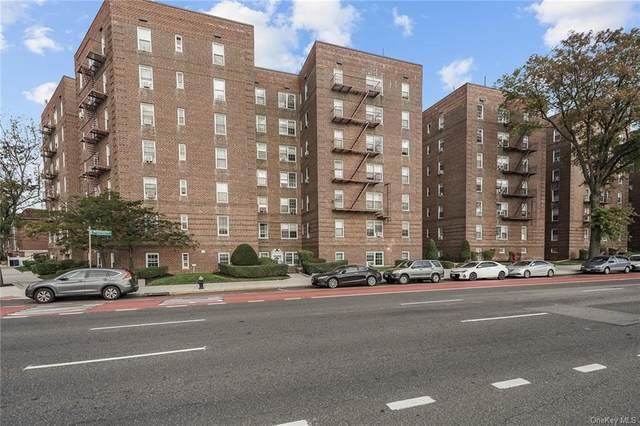 6393 Woodhaven Boulevard 6B3, Rego Park, NY 11374 (MLS #H6128873) :: Goldstar Premier Properties