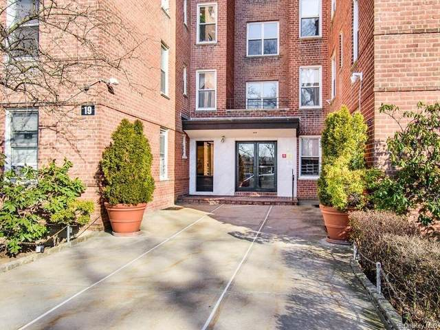 19 Abeel Street 3G, Yonkers, NY 10705 (MLS #H6129043) :: Howard Hanna   Rand Realty