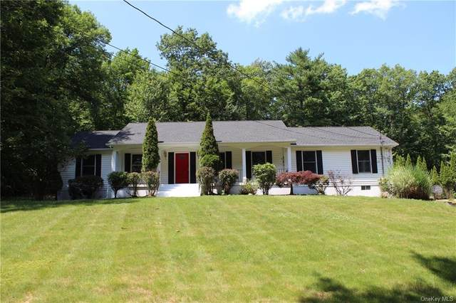 39 Deer Path Court, Bloomingburg, NY 12721 (MLS #H6129055) :: Kendall Group Real Estate | Keller Williams
