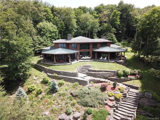 4 Crowley Road, Fremont, NY 12736 (MLS #H6129057) :: Goldstar Premier Properties