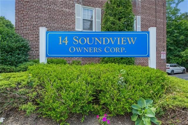 14 Soundview Avenue #52, White Plains, NY 10606 (MLS #H6129299) :: Howard Hanna | Rand Realty