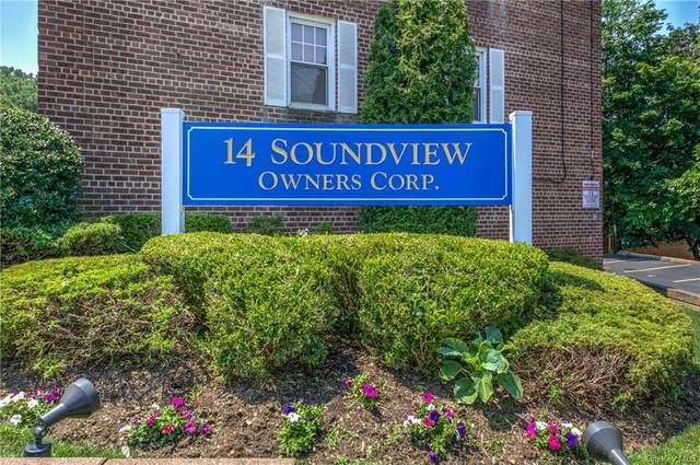 14 Soundview Avenue #12, White Plains, NY 10606 (MLS #H6129369) :: Howard Hanna Rand Realty