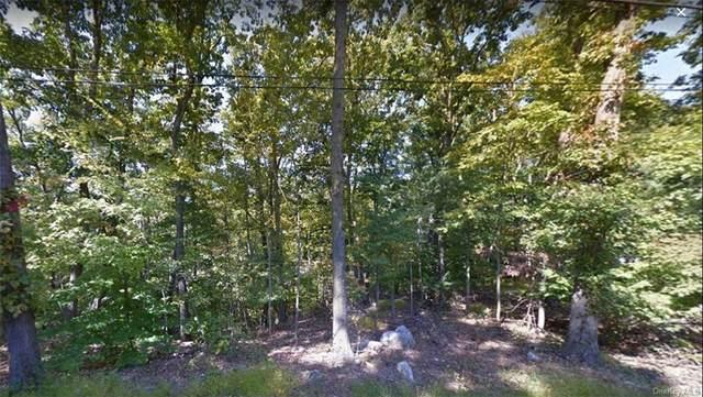 1-45 Maple Road, Putnam Valley, NY 10579 (MLS #H6129804) :: Mark Seiden Real Estate Team