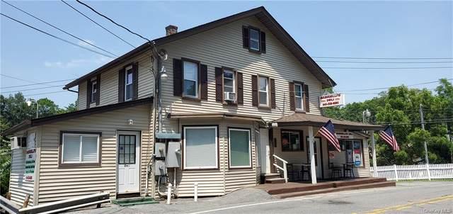 299 Peekskill Hollow Road, Putnam Valley, NY 10579 (MLS #H6129857) :: Mark Seiden Real Estate Team