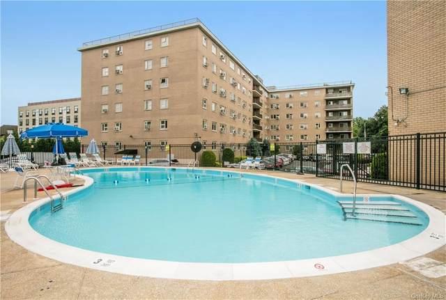 480 Halstead Avenue 2F, Harrison, NY 10528 (MLS #H6129866) :: Kendall Group Real Estate | Keller Williams