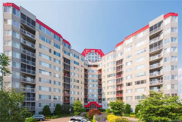10 Stewart Place 2AE, White Plains, NY 10603 (MLS #H6129941) :: Goldstar Premier Properties