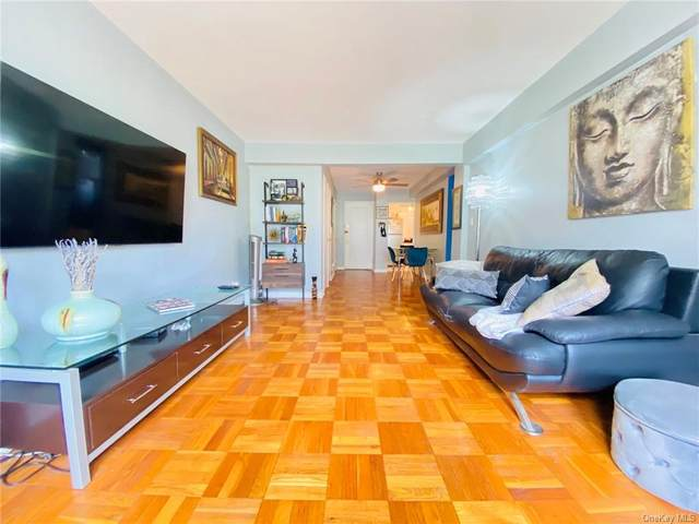 60 Locust Avenue #103, New Rochelle, NY 10801 (MLS #H6129944) :: Laurie Savino Realtor