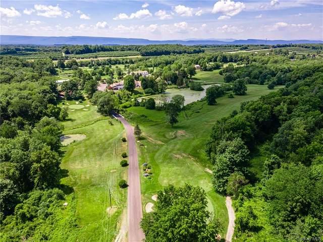 219 Plattekill Ardonia Road, Wallkill, NY 12589 (MLS #H6130017) :: Howard Hanna | Rand Realty