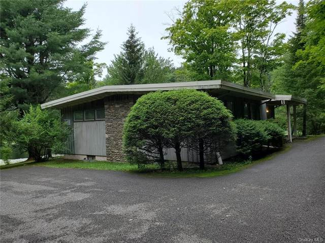 105 Varnell Road, Monticello, NY 12701 (MLS #H6130075) :: Kendall Group Real Estate   Keller Williams
