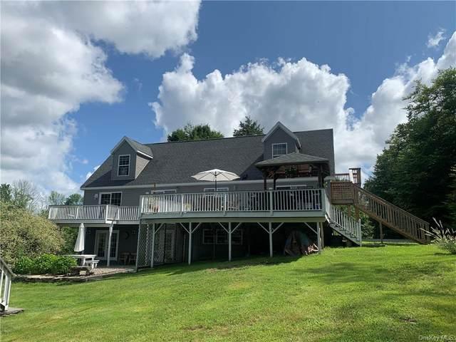 31 Meyer Road, Livingston Manor, NY 12758 (MLS #H6130094) :: Kendall Group Real Estate   Keller Williams