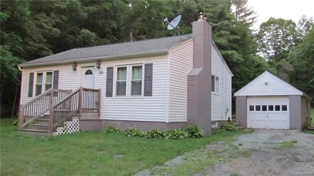 189 Crum Elbow Road, Hyde Park, NY 12538 (MLS #H6130250) :: Howard Hanna Rand Realty