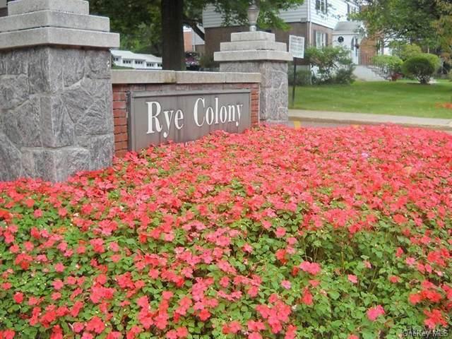 1 Peck Avenue 12B, Rye, NY 10580 (MLS #H6130288) :: RE/MAX RoNIN