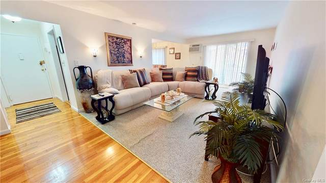 6 Charles Lane 1A, Pomona, NY 10970 (MLS #H6130300) :: Carollo Real Estate