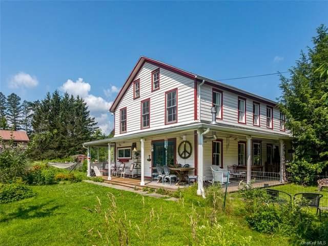 39 Van Wagner Road, Willow, NY 12495 (MLS #H6130301) :: Carollo Real Estate