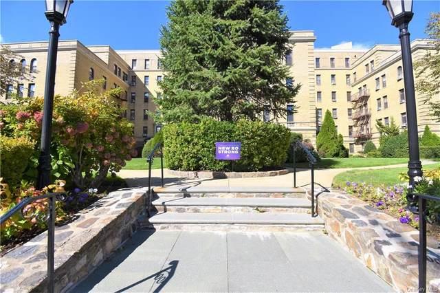 43 Calton Road 2M, New Rochelle, NY 10804 (MLS #H6130314) :: Carollo Real Estate